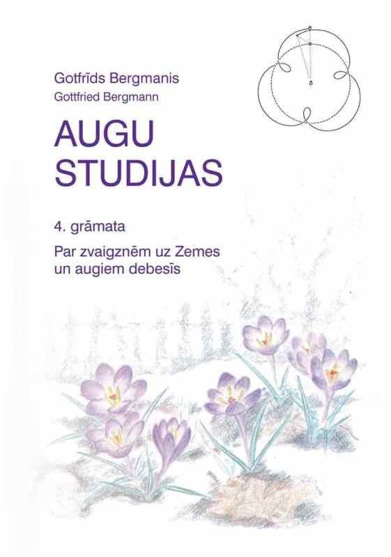 AUGU STUDIJAS, 4. daļa - Gotfrīds Bergmanis