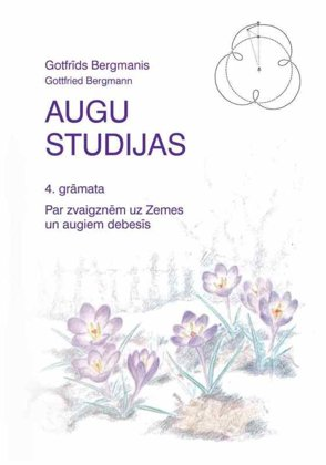 AUGU STUDIJAS - Gotfrīds Bergmanis
